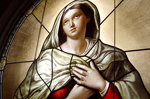 Our Lady of Humility stained glass window by Daprato Rigali Studios