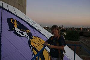 painting chicago skyline
